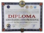 Diploma de la ANACP